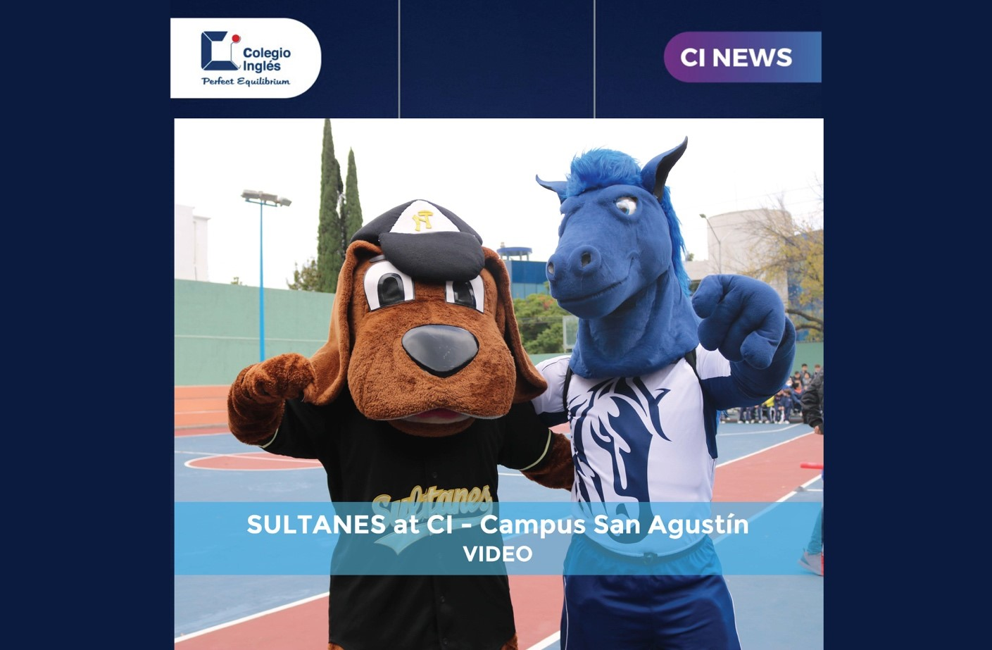 Sultanes at CI